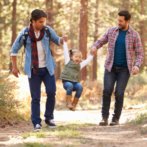 homosexual couples and families